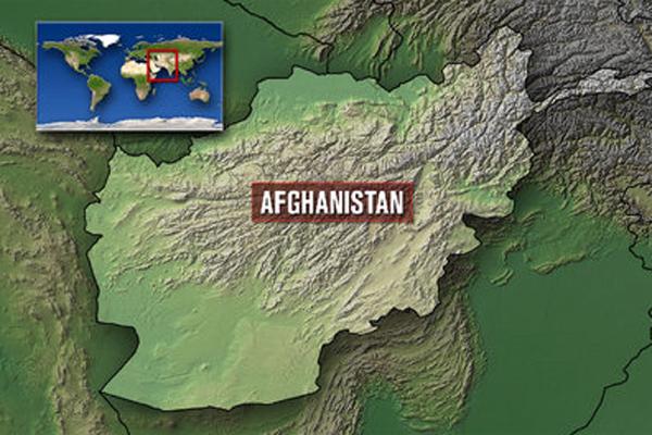 আফগানিস্তানে নতুন অভিযানে ১১৩ জঙ্গি নিহত