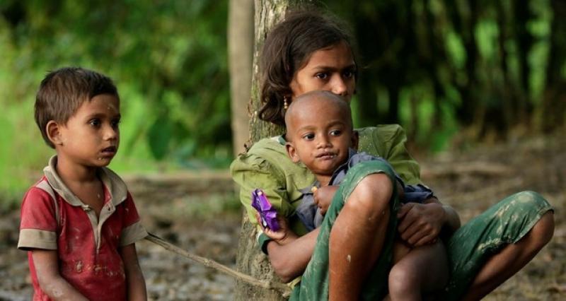 এতিম রোহিঙ্গা শিশুর স্মার্ট কার্ড দেবে সমাজকল্যাণ মন্ত্রণালয়