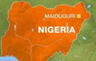 নাইজেরিয়ায় বোমা বিস্ফোরণ, হামলাকারীসহ ১০ জন নিহত