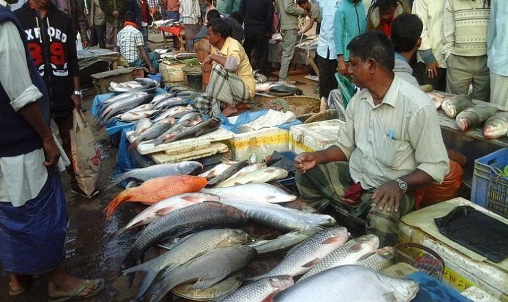 যাত্রাবাড়ীতে চালু হলো দেশের প্রথম সরকারি বিশেষায়িত মাছ বাজার