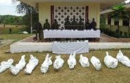 কলম্বিয়ায় সামরিক অভিযানে ১০ গেরিলার মৃত্যু