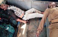 ভারতে বাঘ ধরতে গিয়ে দুই জন নিহত