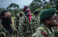 কলম্বিয়া সীমান্তে সামরিক অভিযানে ফার্কের ১৬ সদস্য নিহত