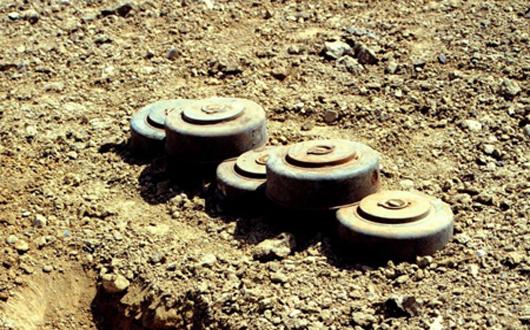 মালীর মোপটি'র মধ্যাঞ্চলে স্থলমাইন বিস্ফোরণে ৪ সেনা সদস্য নিহত