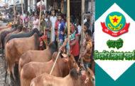 কোরবানীর পশু ক্রয়-বিক্রয় ; ডিএমপি'র নিরাপত্তা পরামর্শ