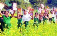 মঙ্গলবার সারাদেশে পাঠ্যপুস্তক উৎসব