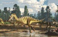 ১২৫ মিলিয়ন বছর আগের ক্ষুদ্র ডাইনোসরের জীবাশ্ম আবিষ্কার