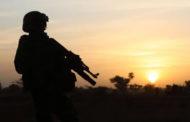 নাইজারে সামরিক অভিযানে ১২০ সন্ত্রাসী নিহত