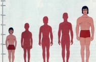 আপনার যে উচ্চতা, সে অনুযায়ী আপনার ওজন ঠিক আছে তো? দেখে নিন