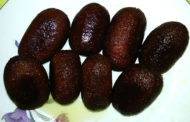 আজকের রেসিপি: কালোজাম মিষ্টি