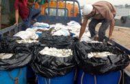 নৌ পুলিশের অভিযানে ৩২৫০ কেজি জাটকা ইলিশ জব্দ