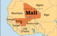 মালিতে গ্রাম জ্বালিয়ে ২৬ জনকে হত্যা করলো দুস্কৃতিকারীরা