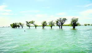 বর্ষায় ভ্রমণ হোক সুনামগঞ্জের টাঙ্গুয়ার হাওরে