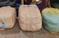১০ কেজি গাঁজা ও একটি  প্রাইভেটকার সহ দুই মাদক ব্যবসায়ী গ্রেফতার