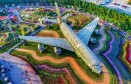দুবাই মিরাকল গার্ডেনঃ বিশ্বের সবচেয়ে বড় ফুলের বাগান