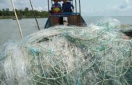 সামুদ্রিক মাছের প্রজননস্থল নিরাপদ রাখতে নৌ পুলিশের অভিযান