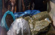 লালবাগ থানা পুলিশের অভিযানে গাঁজাসহ দুই মাদক ব্যবসায়ী গ্রেফতার